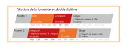 structure de la formation en double diplôme marketing international